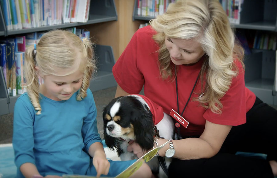 Frequently Asked Questions - Intermountain Therapy Animals